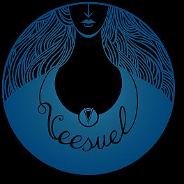 veesuel_logo